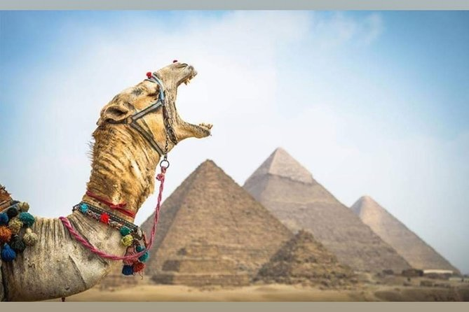 Full day tour Egyptian museum and Giza pyramids