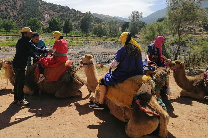 Full-Day Camel Riding and Hiking Tour in the Atlas Mountains from Marrakech