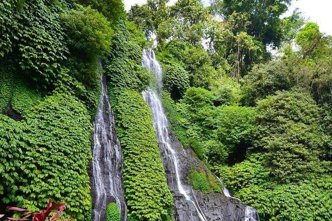 Tamblingan lake,Wanagiri hidden hill, Handara gate & banyumala waterfall