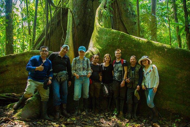 Yasuni National Park 3 days 2 nights in the Amazon of Ecuador,comfortable rooms