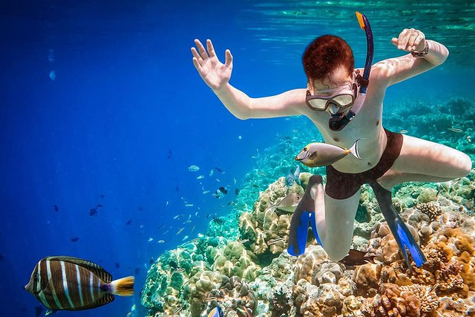 Sightseeing boat tour & snorkeling experience in Sardinia