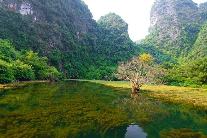 Ninh Binh Daily Tour: Hoa Lu - Am Tien Cave- Trang An boat ride photo 10