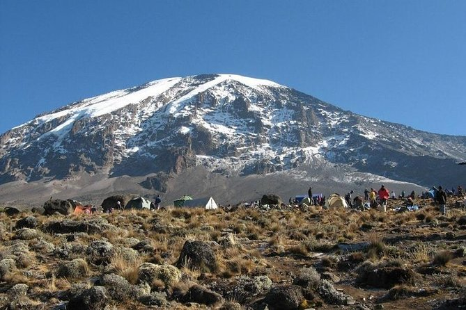 7 Days Kilimanjaro Climb Machame route photo 4