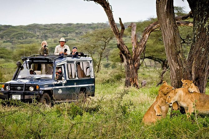Manyara National Park Day Tour