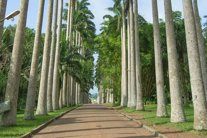 Escape Accra City to Aburi Gardens and Tetteh Quarshie Cocoa Farms photo 3