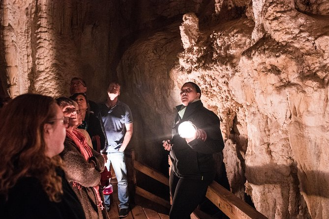 Full-Day Bay of Islands and Glow Worm Caves Small-Group Tour