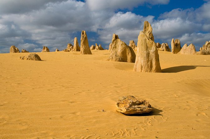 The Pinnacles, Sea and Dunescapes, Bush Reserve and Sunset Day Tour