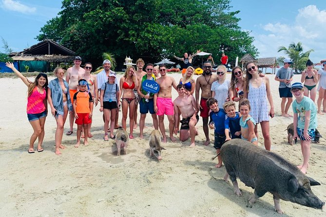 Pig Island Koh Samui by Speedboat with Sunset (Exclusive Pig Feeding Experience) photo 27