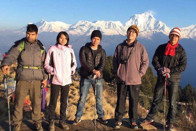 Poonhill Trekking Nepal 5 Days (kathmandu - Kathmandu)