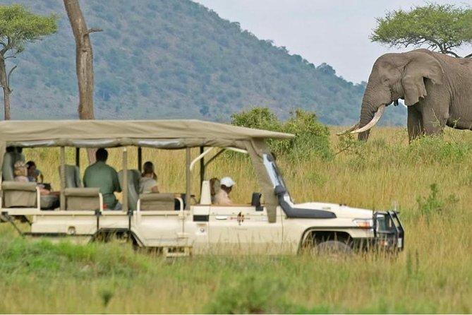 South Africa. Cape Town Tour, Aquila Safari Game Reserve Overnight