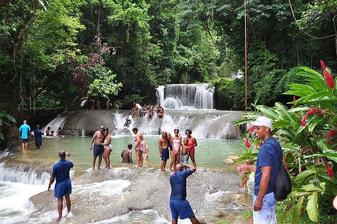 YS Falls and The Pelican Bar Adventure Tour from Ocho Rios