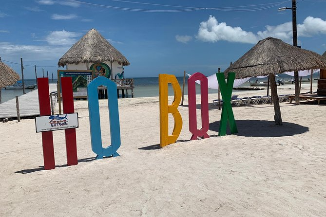 Holbox Island Discovery Tour From Cancun and Playa del Carmen