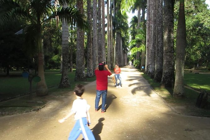 Botanical Garden. Tijuca Forest and Parque Lage: Small Group - 5 hours