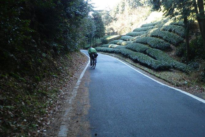 Kyoto, Nara 2 days bike tour with overnight self guided