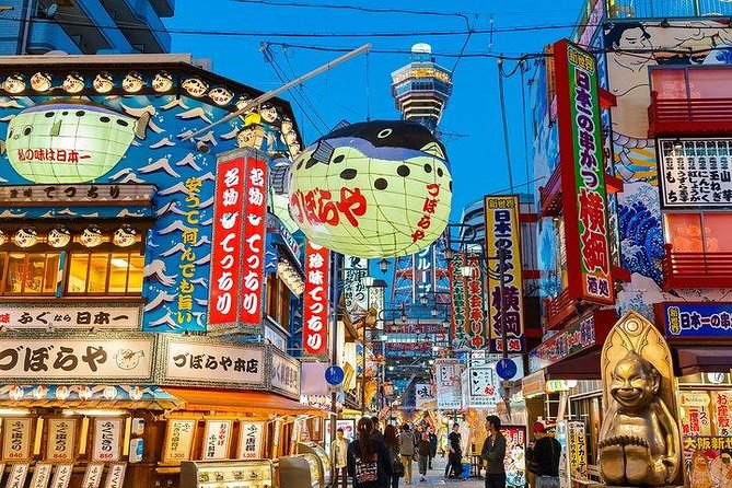 Private and personalized experience: see Osaka with a local photo 7