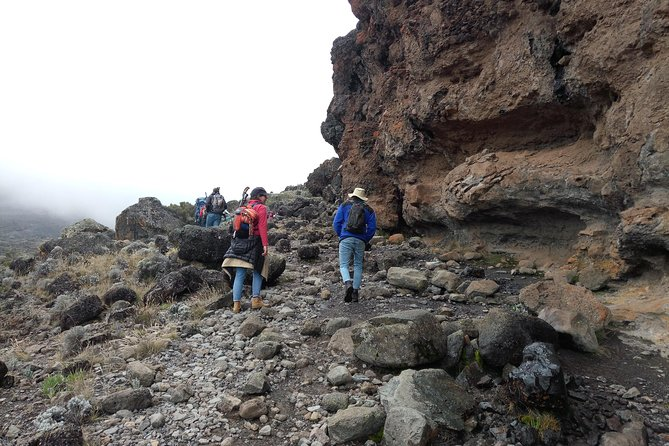 6 days Machame route climbing Mt.Kilimanjaro photo 10