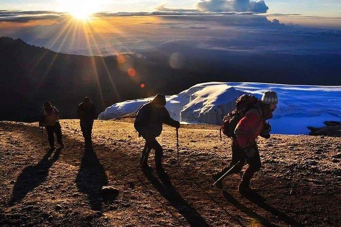Full Day Hike Mount Kilimanjaro Safari