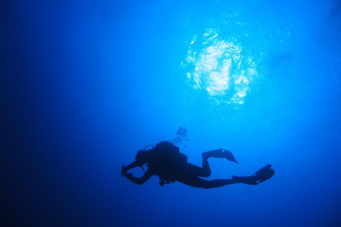 Qualified Diver 1 Tank Dive in Mykonos