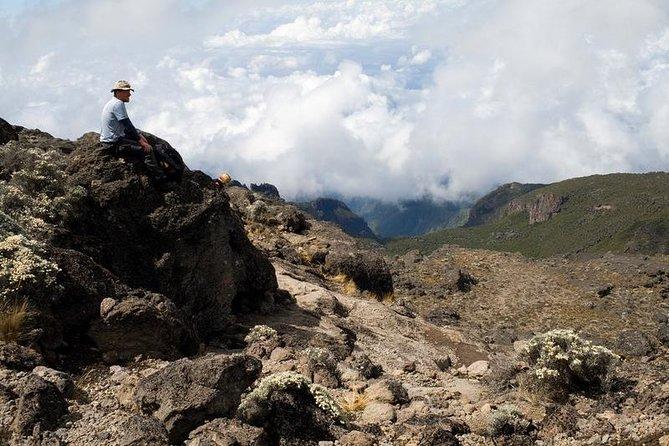 1 Day Marangu Route Climbing Kilimanjaro