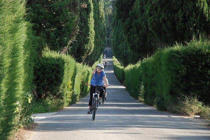 Tuscany Bike Tours: Eintägige Radtour durch die Hügel des Chianti
