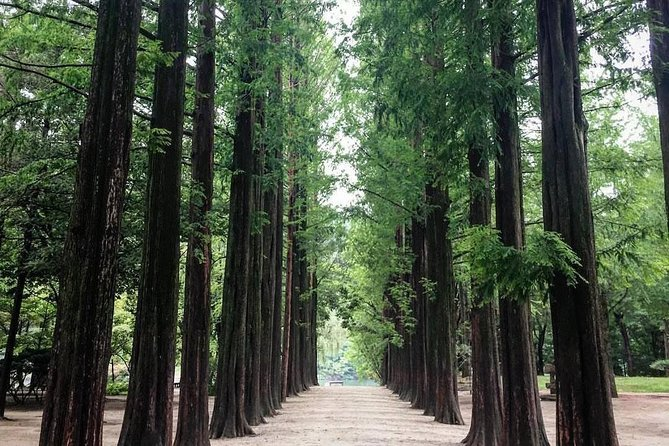 Private Costumized Tour : Nami Island & around Gapyeong (up to 10pax)