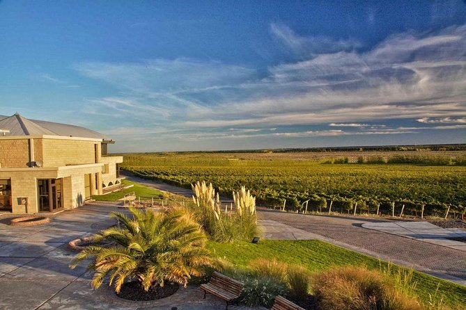 Gourmet Experience Patagonia Wine Route