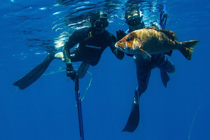 Half Day Spearfishing in Playa del Carmen