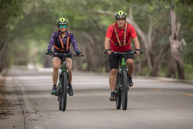 2 days Bike Tour: Biking to the Pacific Coast