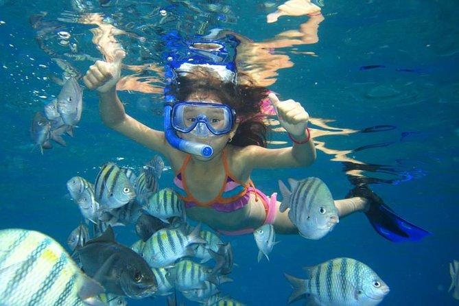 Utopia Island Snorkeling Sea Trip - Hurghada