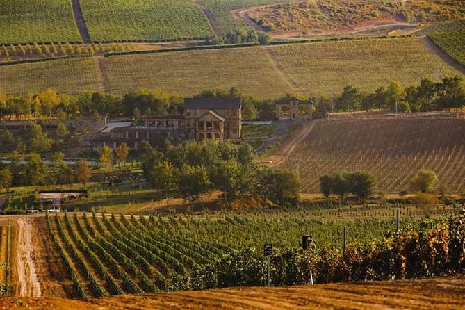 Wine tour to Shamakhi