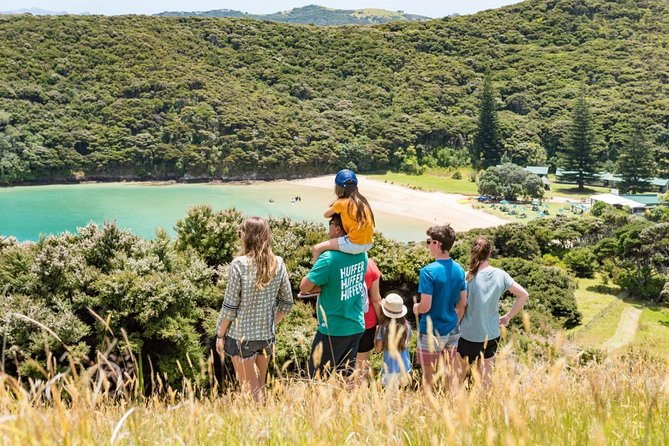 Half-Day Bay of Islands Discovery Tour from Paihia