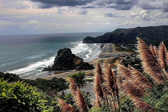 Piha Beach and Waitakere Ranges Adventure