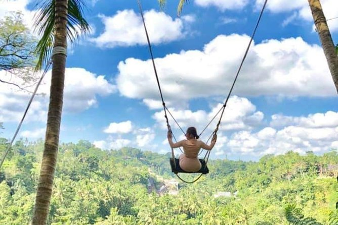 Ubud Jungle Swing Volcano Private Tour - Free WiFi