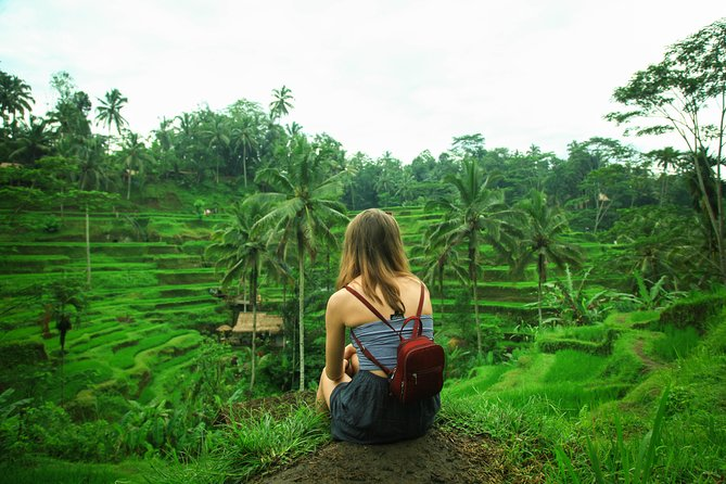 Ubud rice terrace walk and flying fox tour