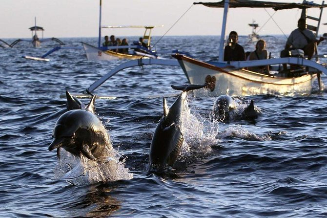 Private Tour : Bali Dolphin and Sunrise