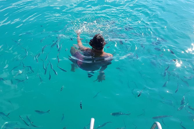 Snorkeling & Pig Island Experience photo 22