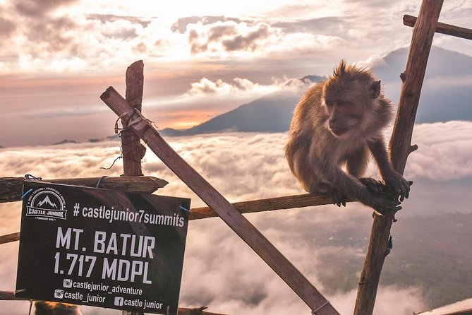 Sunrise Trekking on Batur Volcano photo 7