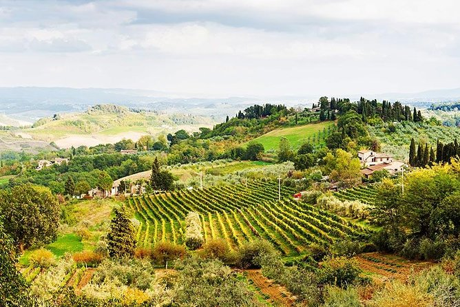 Day trip to Orvieto and Umbria Region from Rome