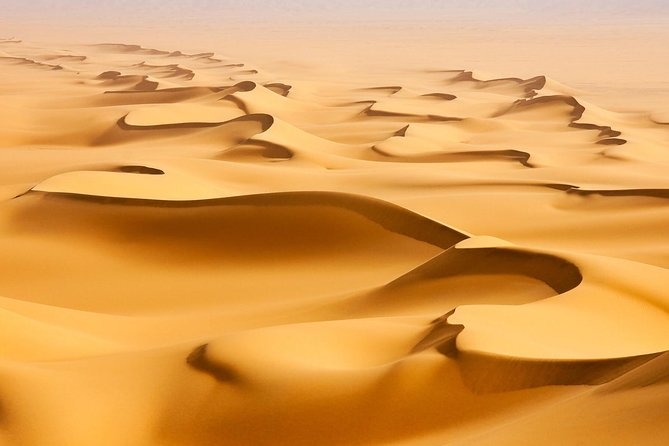 Morning Desert Safari with Camel Ride and Sandboarding