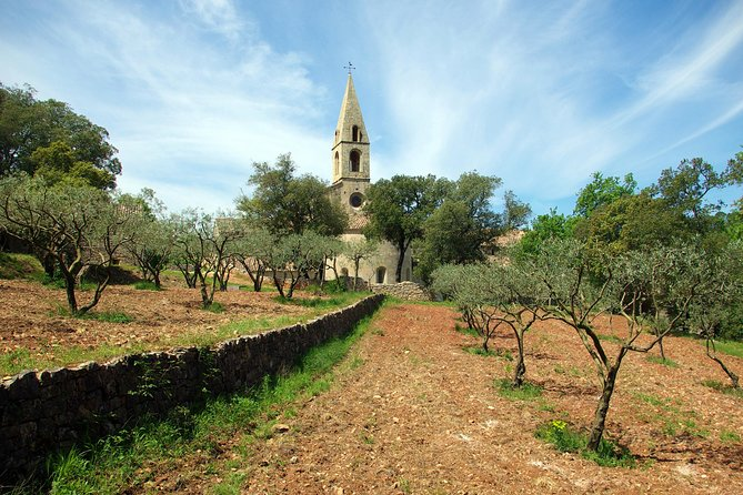 Discover famous churches in the South of France in a ten hour private tour