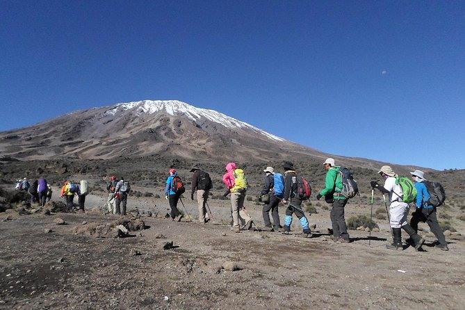 Kilimanjaro Rongai Route 7 Days photo 3