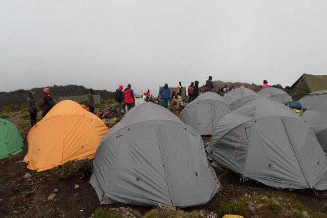 Kilimanjaro Rongai Route 7 Days photo 7