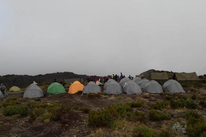 Kilimanjaro Rongai Route 7 Days photo 9
