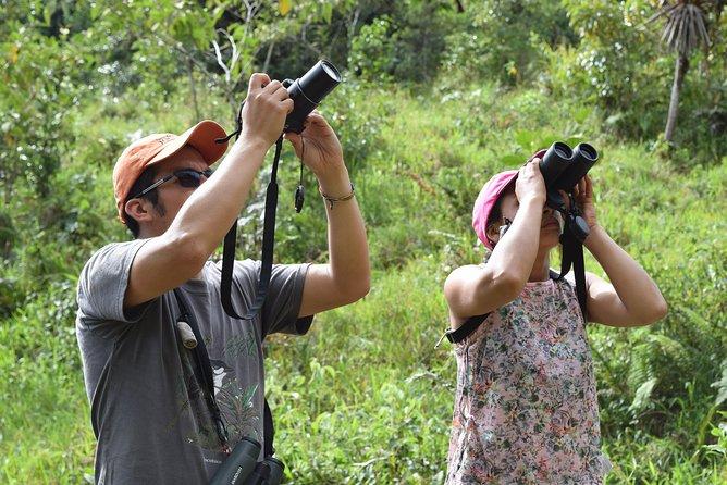 Wildlife Encounter Mindo Tour