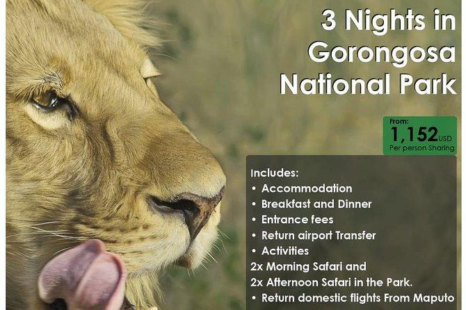 3 nights in Gorongosa