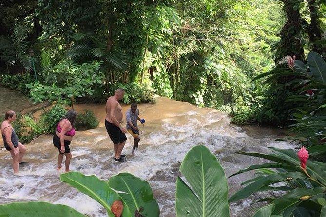 Konoko Falls and Tropical Garden Tour from Runaway Bay