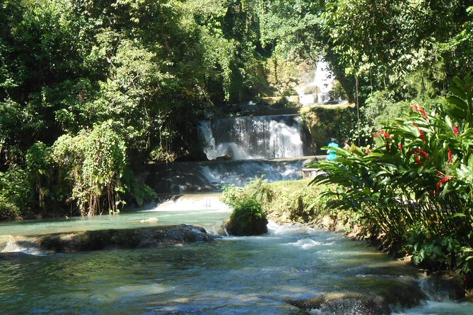 Black River Safari and YS Falls Tour with lunch