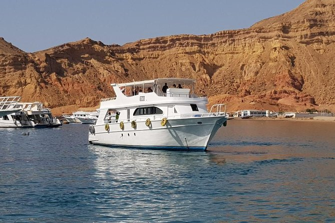 City Tour and Glass Boat Special Trip From Sharm Port photo 4