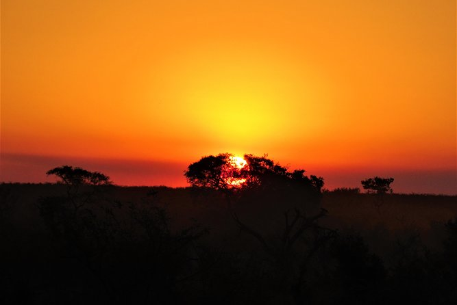 Parc national Kruger Sunset Safari