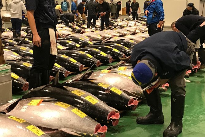 VIP Tuna Auction and Special Access at Toyosu Fish Market